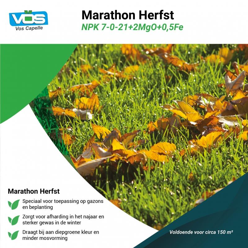 Marathon 7-0-21 (emmer)