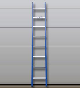 DAS Enkele ladder