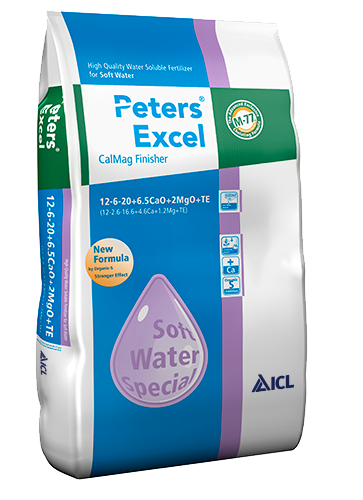 Peters Excel