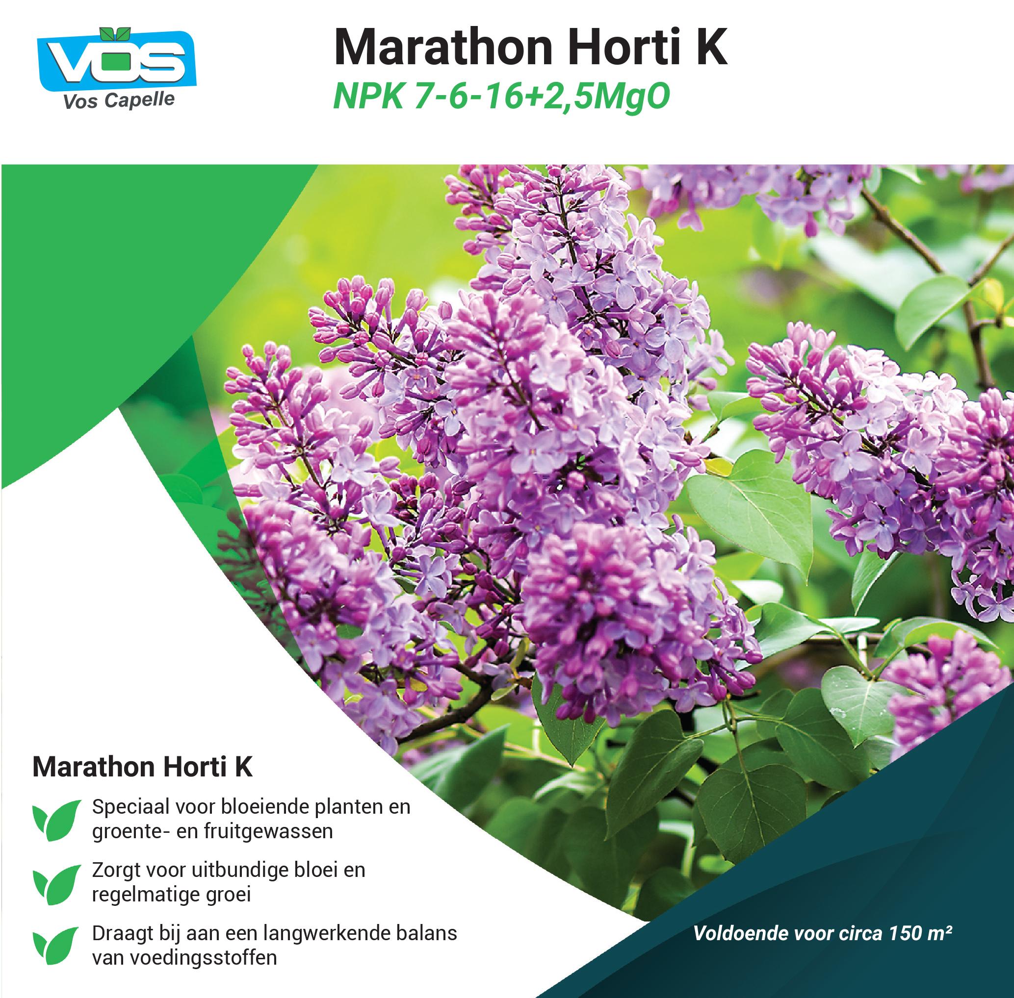 Marathon Horti K 7-6-16