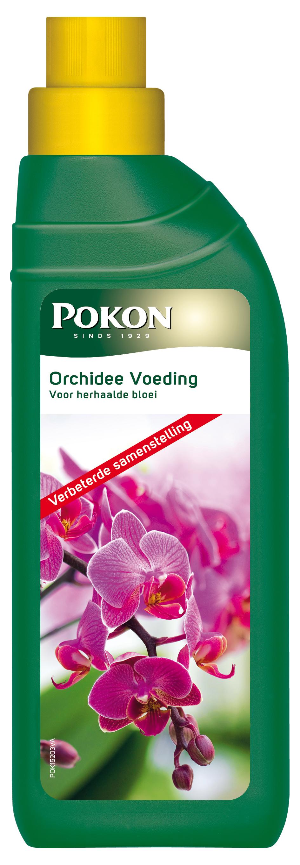 Pokon vlb mest Orchidee (250ml)