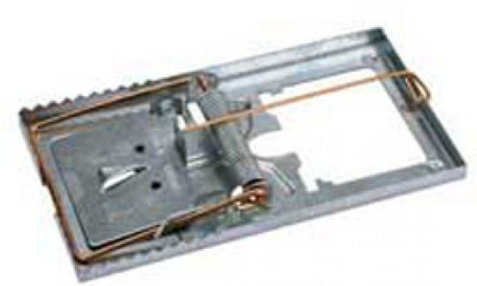 Rattenval metaal 70x90mm